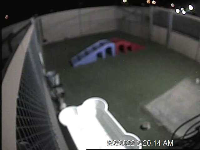Live Web Cams   Dog Care Services